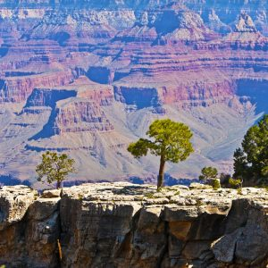 Voyages-organise-USA-Arizona-Grand-Canyon-National-Park-Voyages-Del-Tour